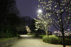 IMG_0191-2.jpg