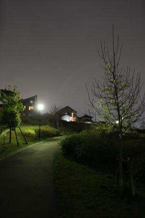 IMG_0262-2.jpg